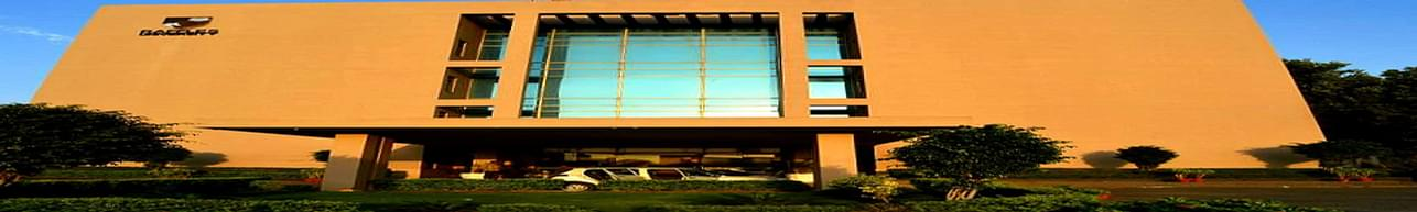 Raffles University, Neemrana