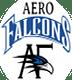 Aerofalcons Aviation Services & Training, Hyderabad logo